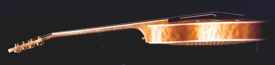 sideview of Foster A T 5